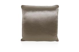 Fortune Cushion