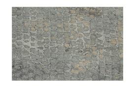 Danio Rug 240x300cm