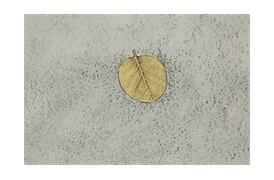 Fallen Leaves Console