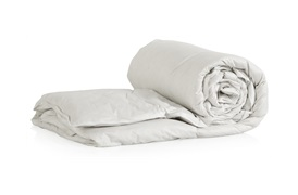 Goose Feather & Down       Pillows & Duvets