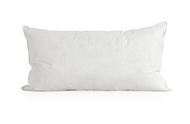 European Duck Down        Pillows & Duvets