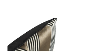 Funky Stripe Noir Cushion