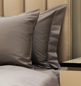 300tc Plain King Duvet Set Iron