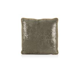 Amnesia Cushion
