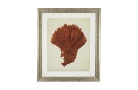 Antique Red Coral Prints             by Eichholtz