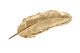 Feather Tray