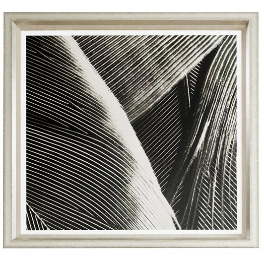 Abstract feathers III