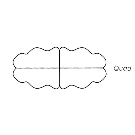 Quad Mink